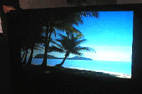Clarex Blue Ocean Screen - Rear Projection